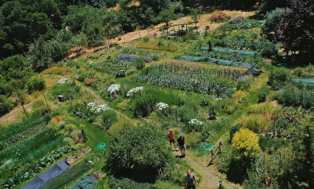 OAEC_Gardens_001_o