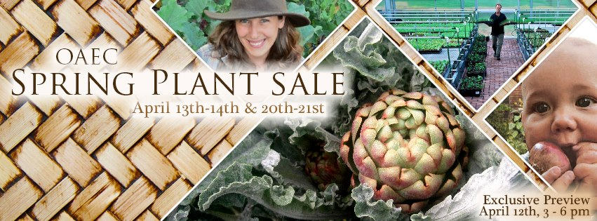 OAEC_Plant_Sale_Collage_001_n