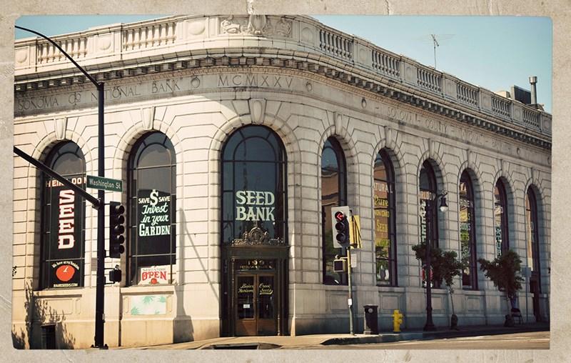 petaluma-seed-bank2