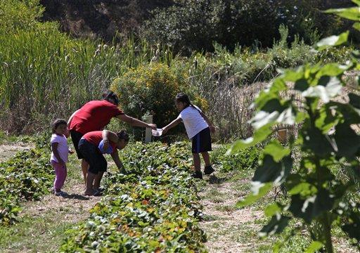 Alemany_family_farming_myhero_com