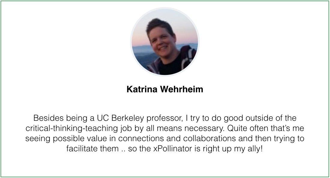 SuperPollinators Katrina Wehrheim